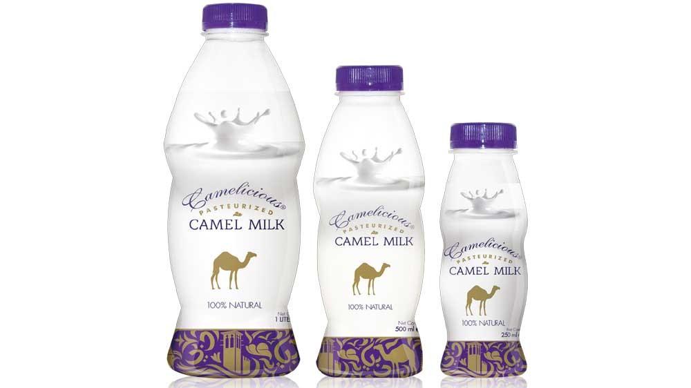 Fresh Camel Milk