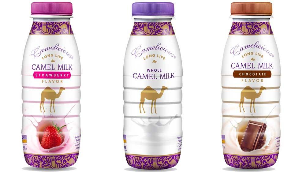Long Life Camel Milk